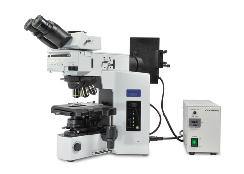 Olympus Bx51 Microscope Trinocular Brightfield